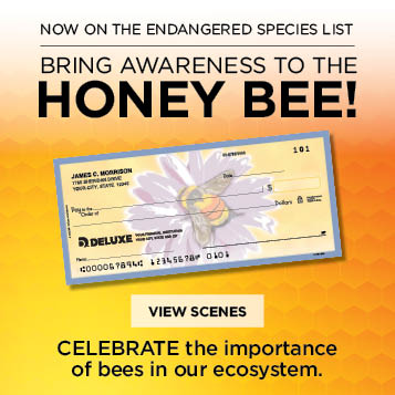 Bring Awareness to the HoneyBee! Unique check designs.